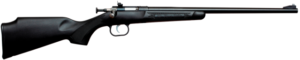 .22LR Youth Rifle